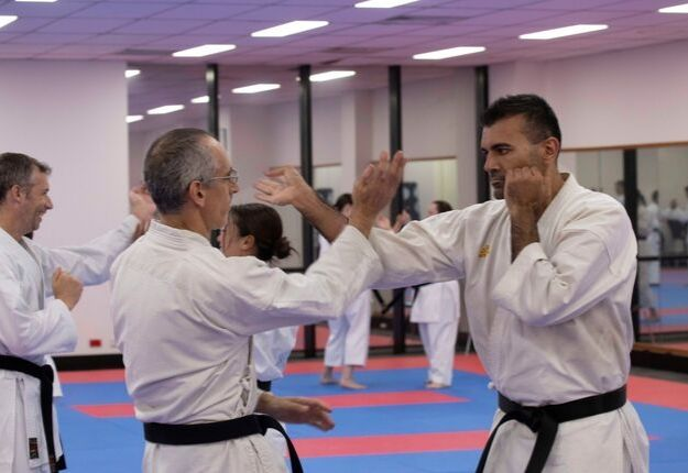 Goshukan Adults Karate journey